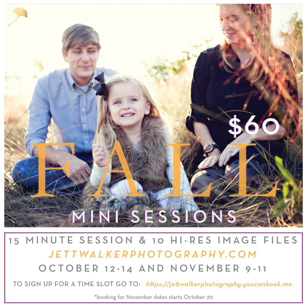 Fall-Mini-Sessions-01.jpg