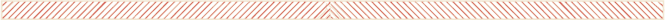 local-horizontal-divider-660-striped.png