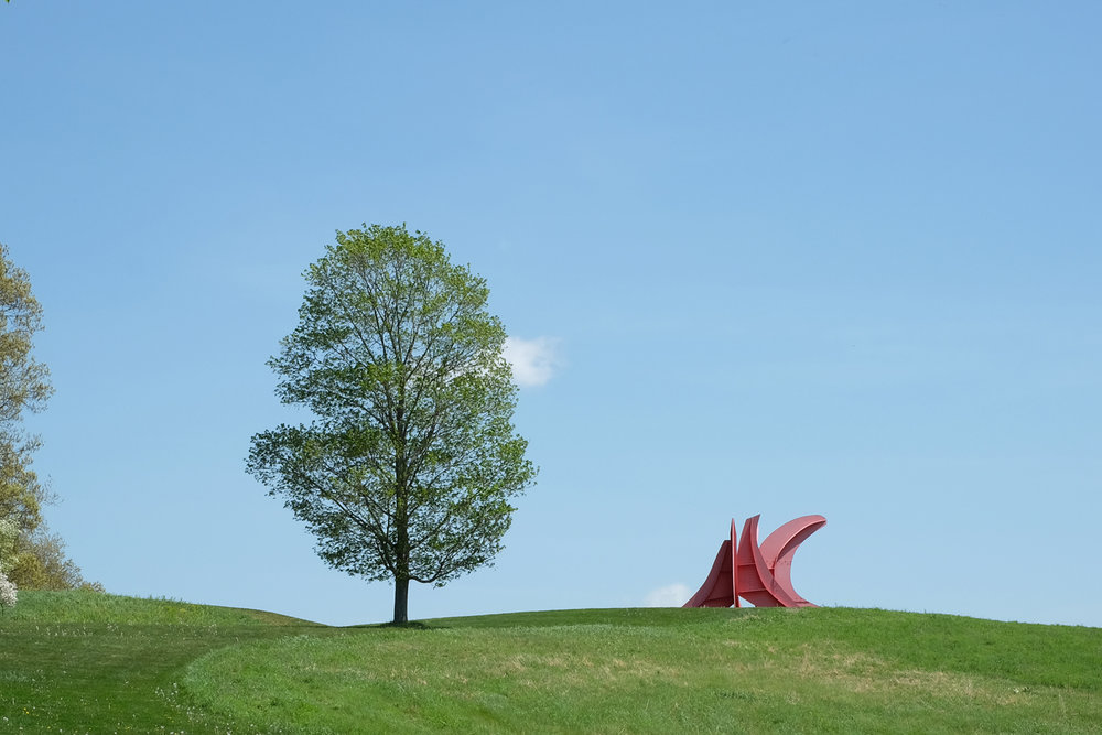Storm King l The New Amity Workshop