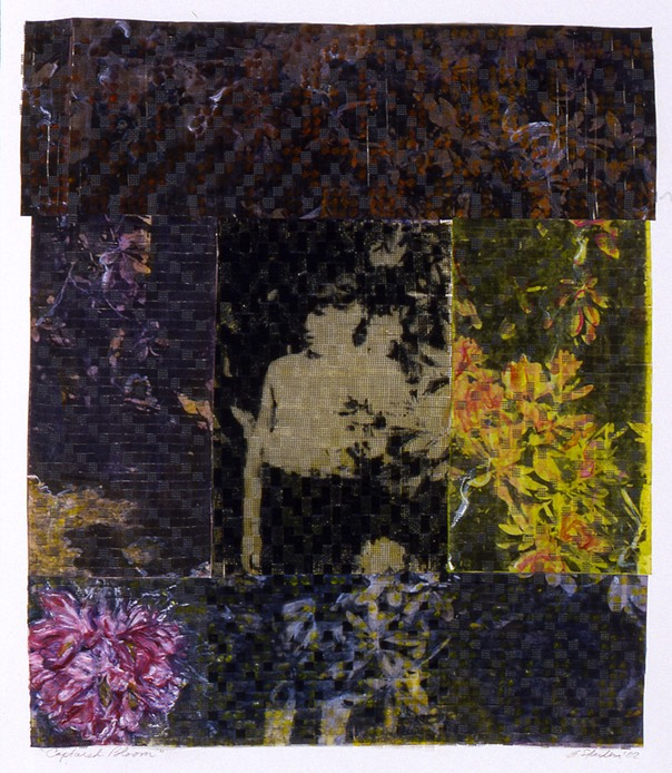 "Gail Skudera,  Captured Bloom , 2005, Woven mixed media, 30"" x 24"", $1,800."