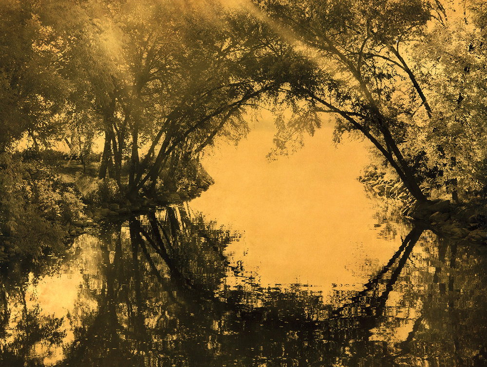 Joyce Tenneson, Circle Reflection with Trees, 2012, Mixed media on plexiglas, 30h x 40w in. $8,750