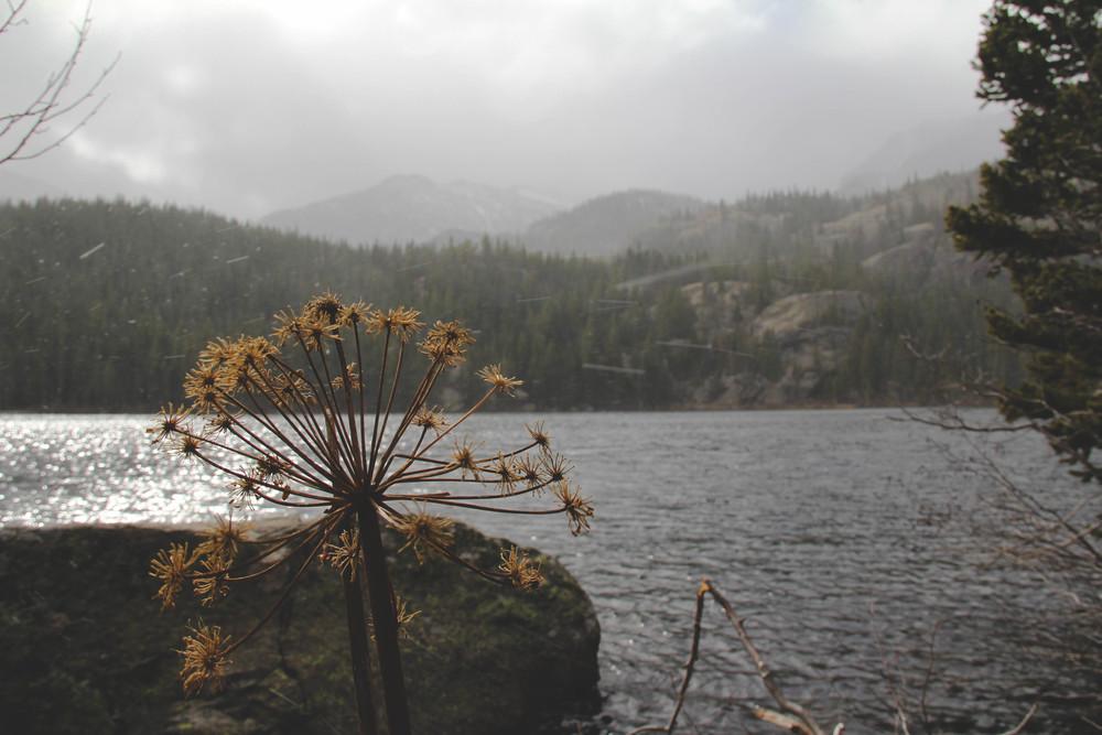Colorado-34-3.jpg