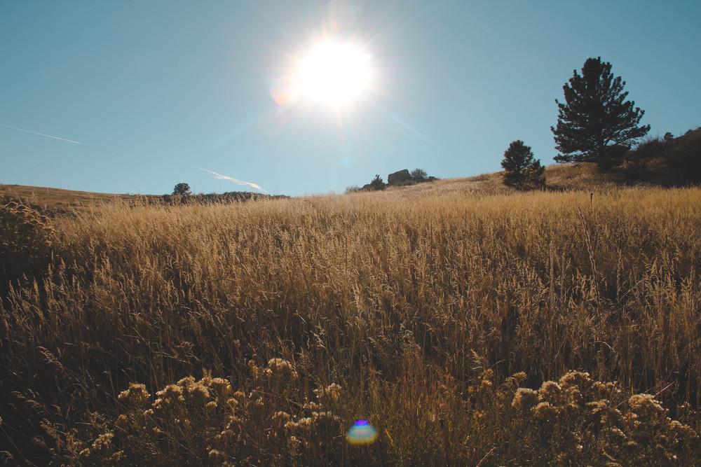 Colorado-70.jpg