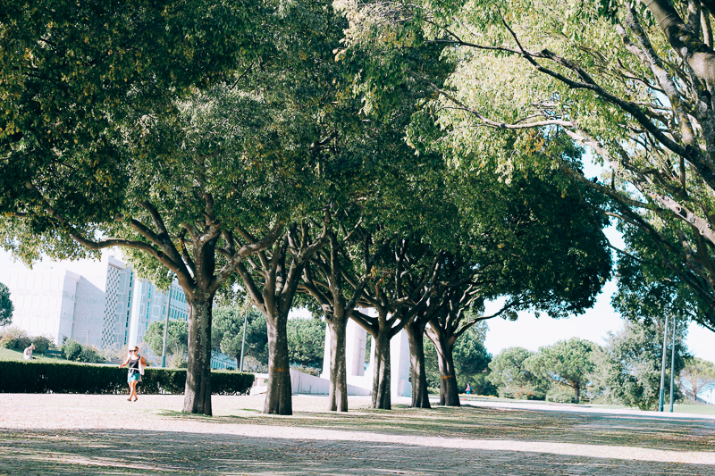 View from Parque Edoardo VII.