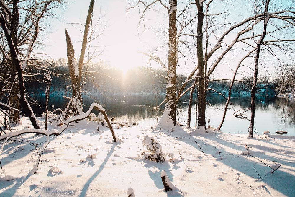 Snow Dreams (Nashville, USA)