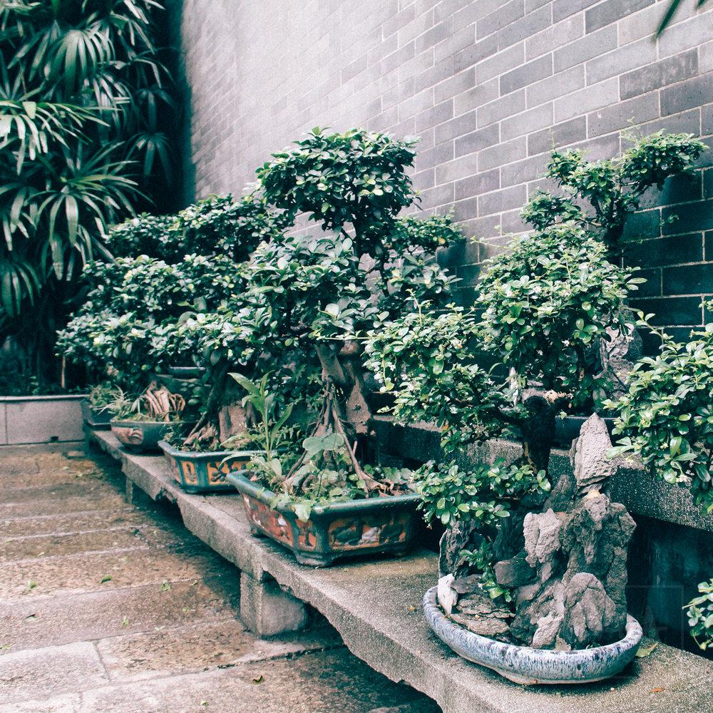 HSD_Photo_Travel_Asia-1-20.JPG