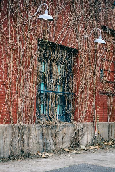 The Window (Little Rock, Arkansas)