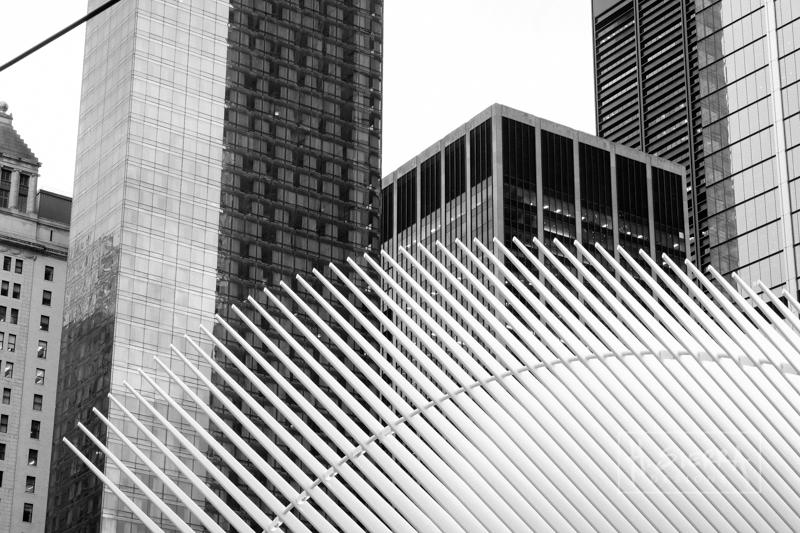 NYCbyHELGA SIERRA-1.jpg