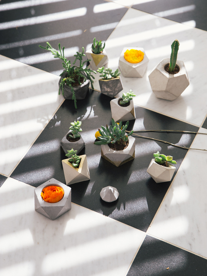 Win an awesome Concrete Geometric planter for your home!