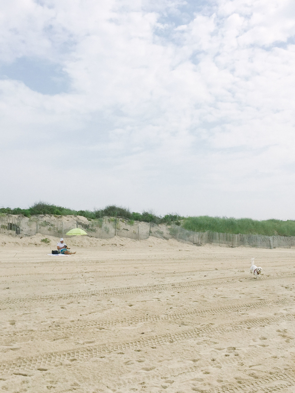OLD BRAND NEW • THINGS TO DO IN MONTAUK
