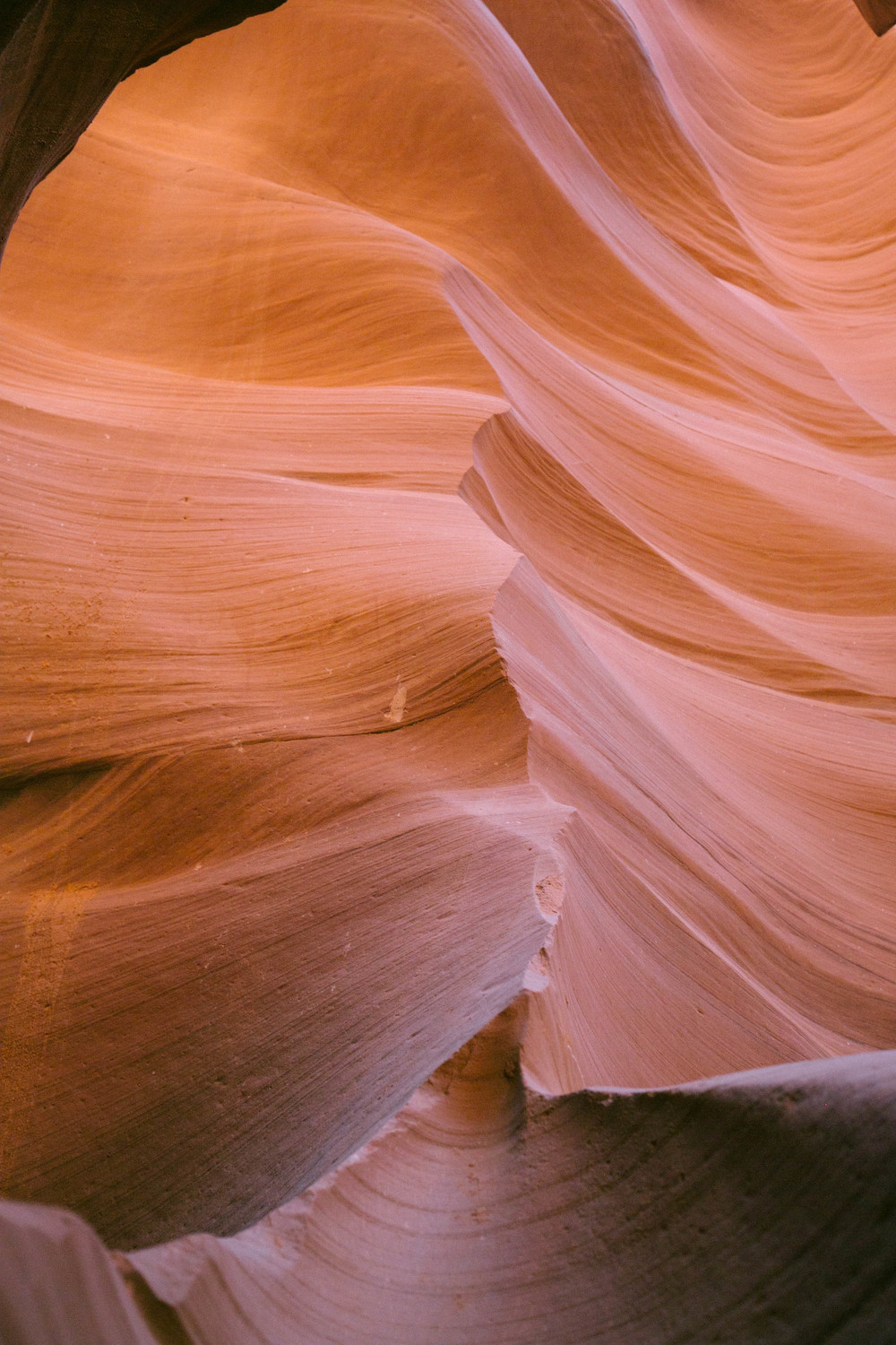 Canyon Crawl • Antelope Canyon