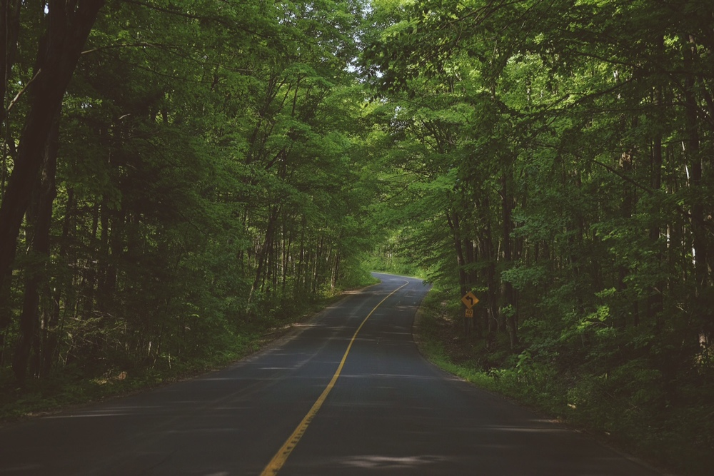 Muskoka Beach Road. Photo: Graeme Stewart-Robertson, 2015