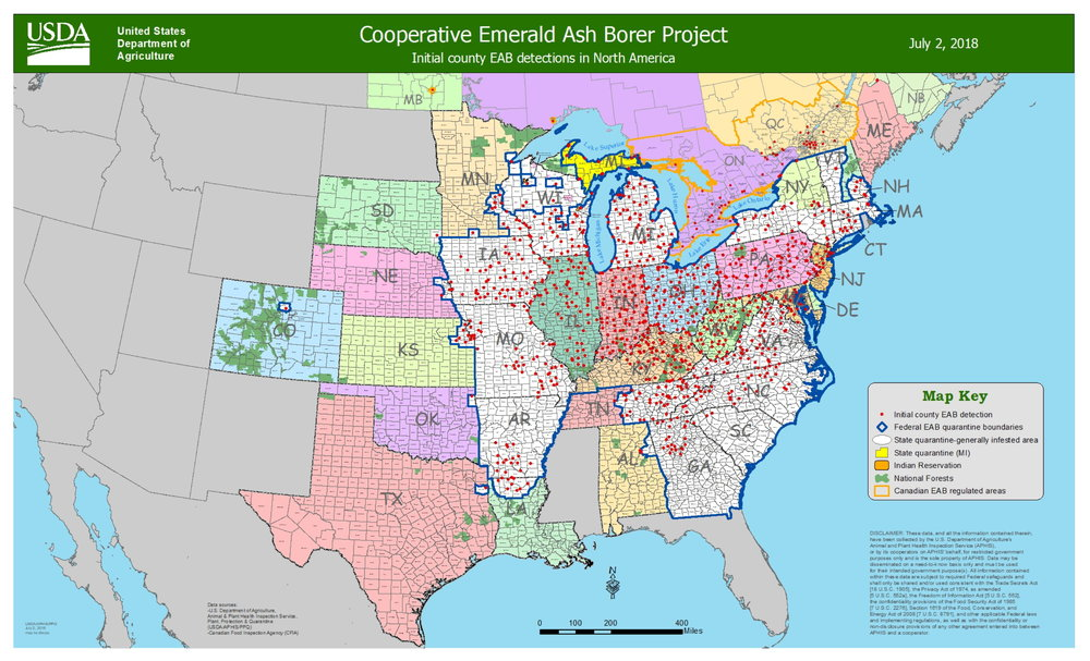 Map showing the current North American distribution of the Emerald Ash Borer from the  C  ooperative Emerald Ash Borer project  .  Map last updated on July 2, 2018.