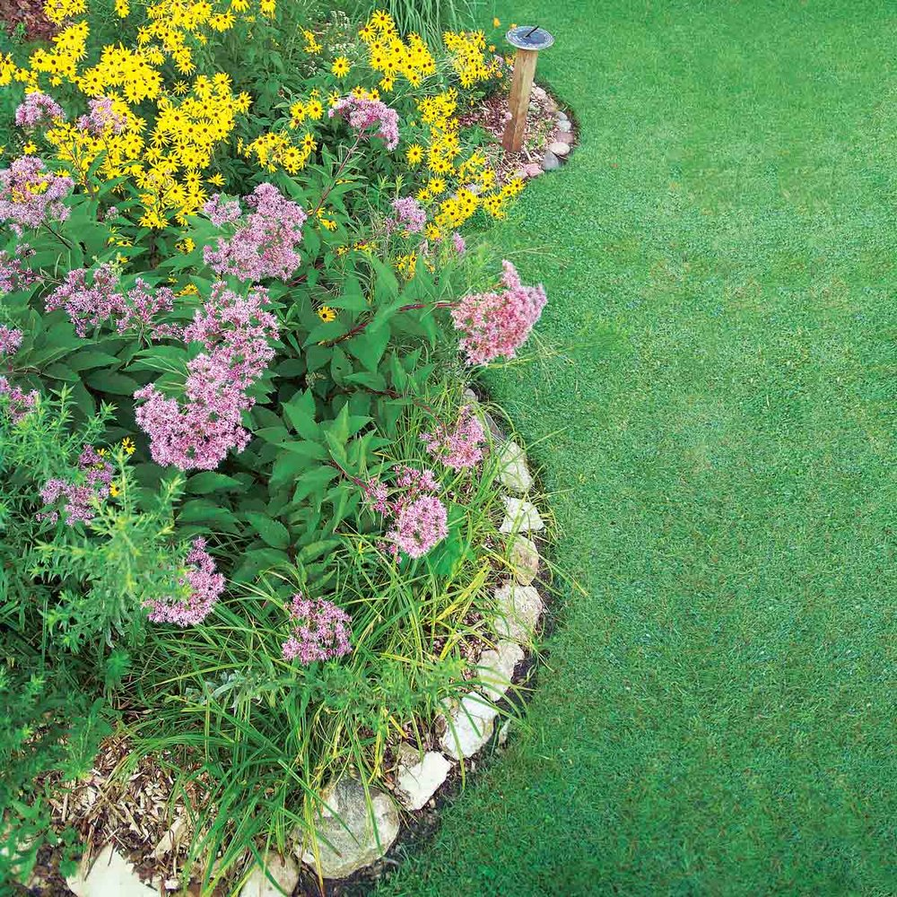 """""""It's a beautiful flower bed—and a reservoir for yard and roof runoff"""" -   Family Handyman"""