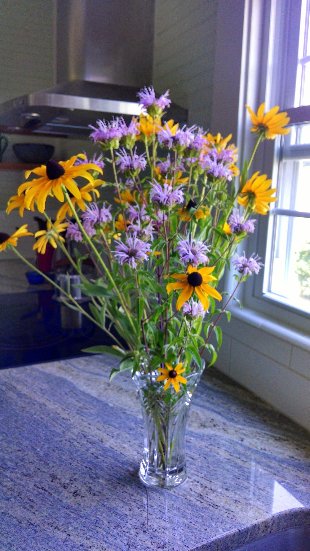 susans and bee balm.jpg