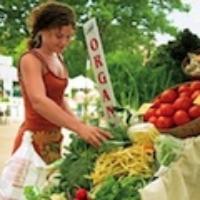 shopping-farmers-market_120.jpg
