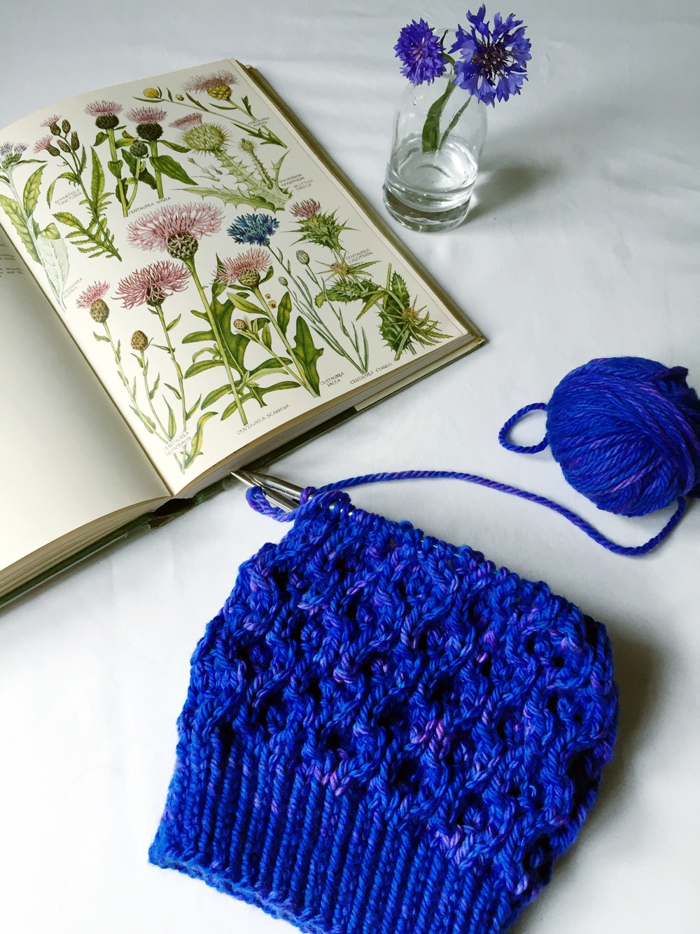 August wips&blooms- Cornflowers, 'The Concise British Flora in Colour' & 'Lapsang' by Clare Devine using GingerTwistStudios.