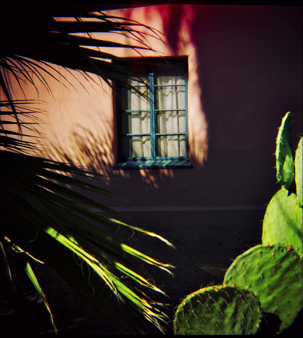 Window 29