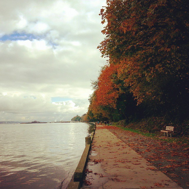 Owen Beach at Point Defiance Park on November 1st, 2014 by Jenny Ryan of Amiabelle.