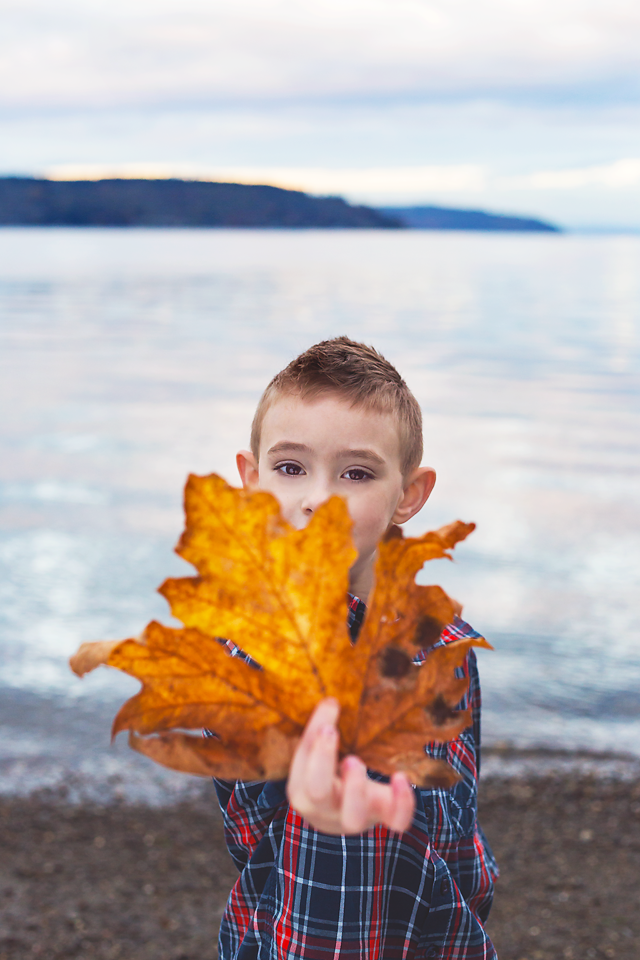 web 22 sandy reed family november 2014 amiabelle tacoma washington .png