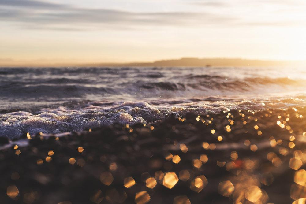 1 owen beach 5 start lr edits of 16 feb 2015 sunrise and some flowers from my garden-71.jpg