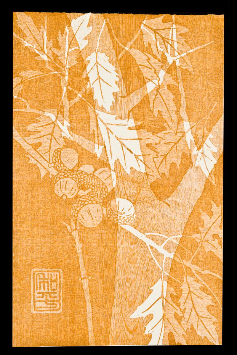 "Northern Red Oak Woodcut | 16x25"""