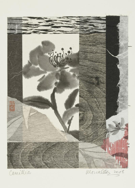 """Camellia Collage   8x10"""""""