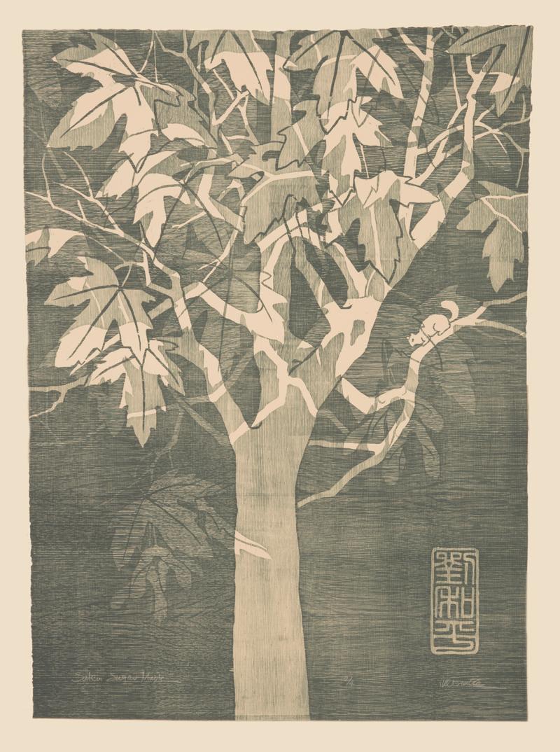 "Salem Sugar Maple Woodcut | 30x40"""