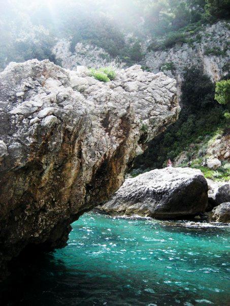 capri_web.jpg