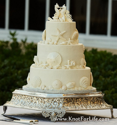 cream-seashell-wedding-cake.jpg