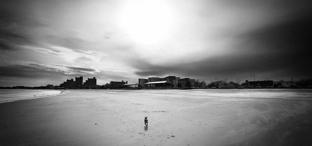 ...Big Beach