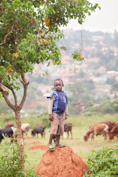 Morse_web_Uganda_001.jpg