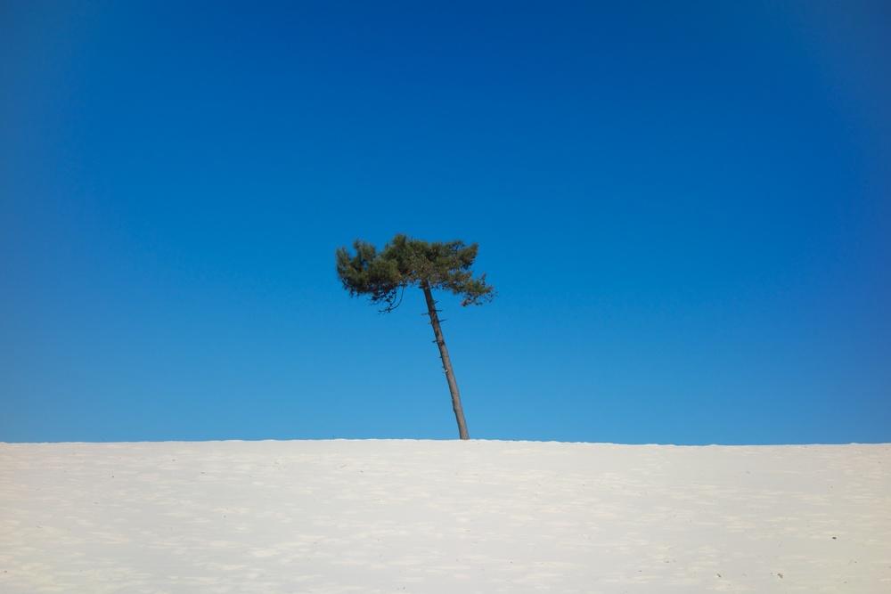 October 27, 2013  El Pinar Beach (just outside Montevideo, Uruguay)