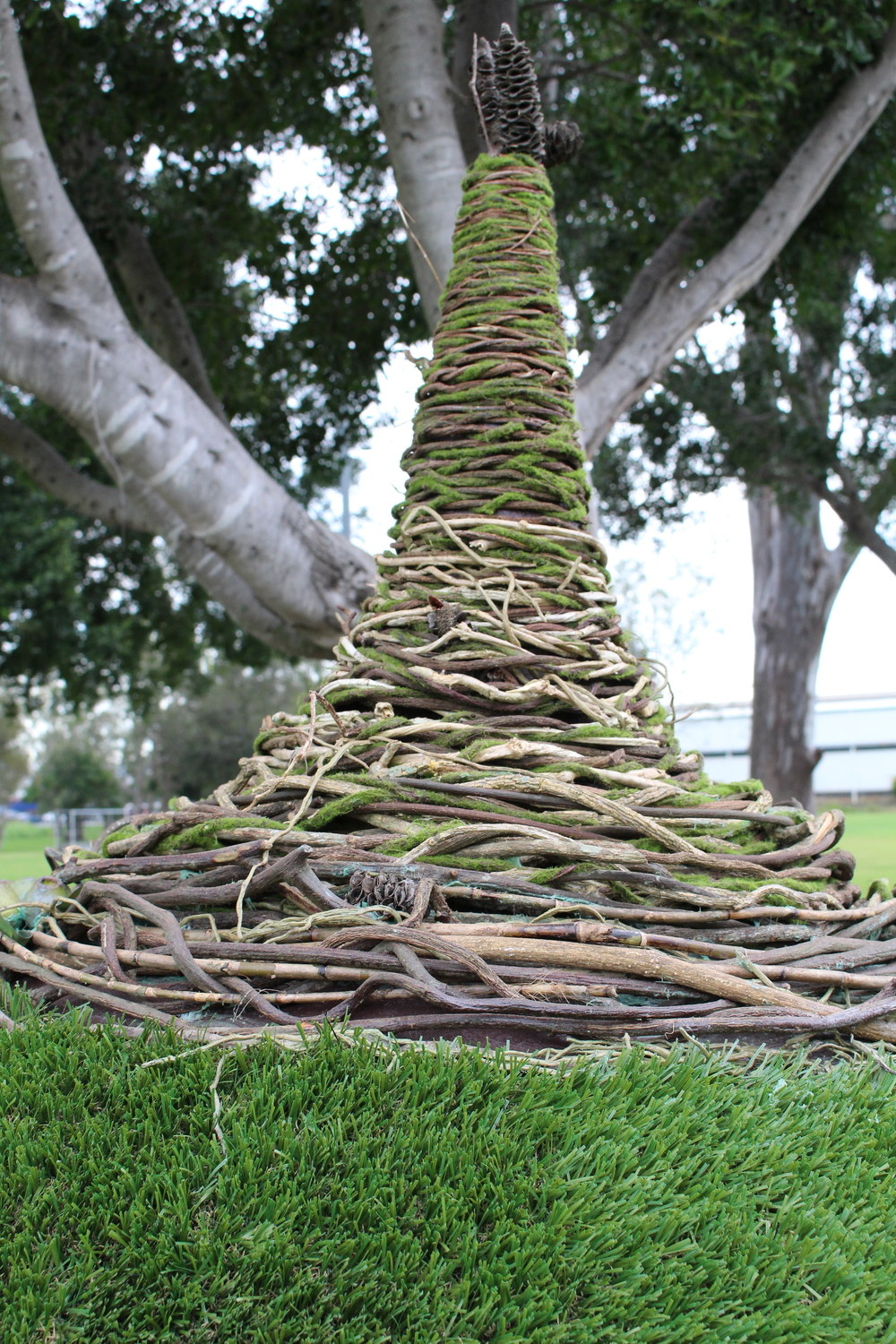 Woven Bush Vine Create that connected to nature feel but also adds a snippet of whimsy...
