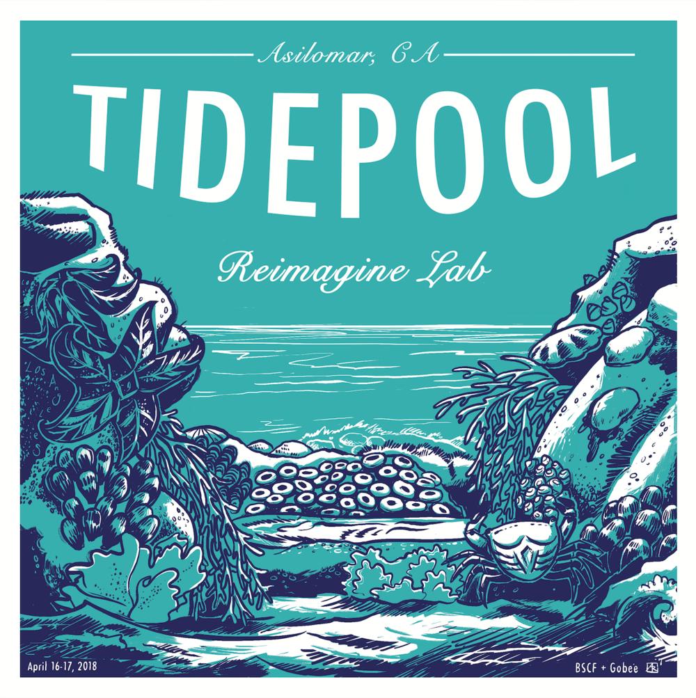 tidepool-gobee-blue-shield-illustration-art-california