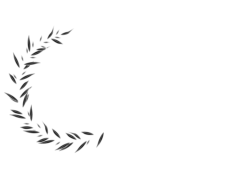Steven Dalton Photography : Pittsburgh Wedding photographer | Butler Wedding Photographer | Weddings | Engagement | Coup