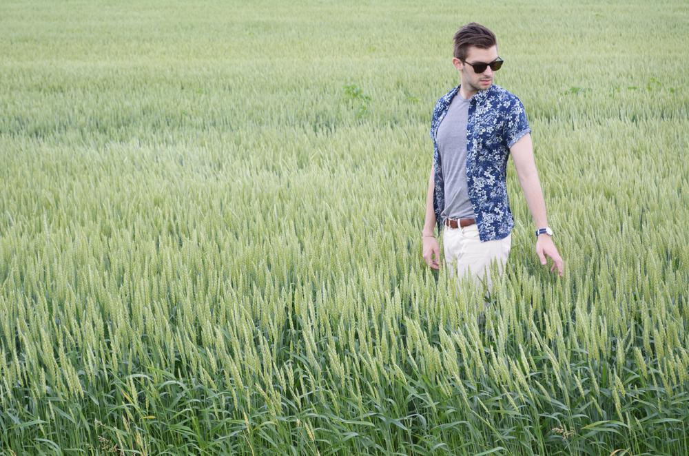 wheat4.jpg