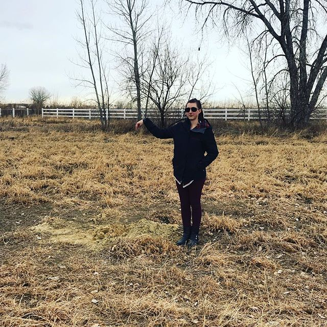 finding bore holes for soils tests on 80 acres #whackamole #landdevelopment #coloradohardmoneylender #instagood #instalike #like4like #follow4follow