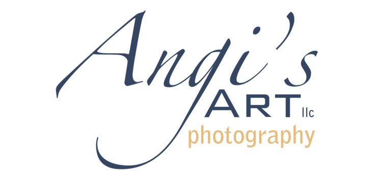 Angi's Art llc