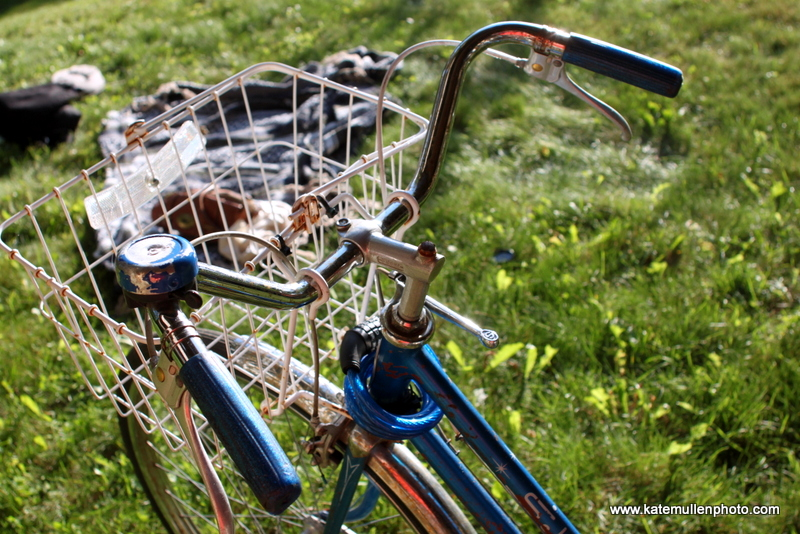 signs of summer bicycle