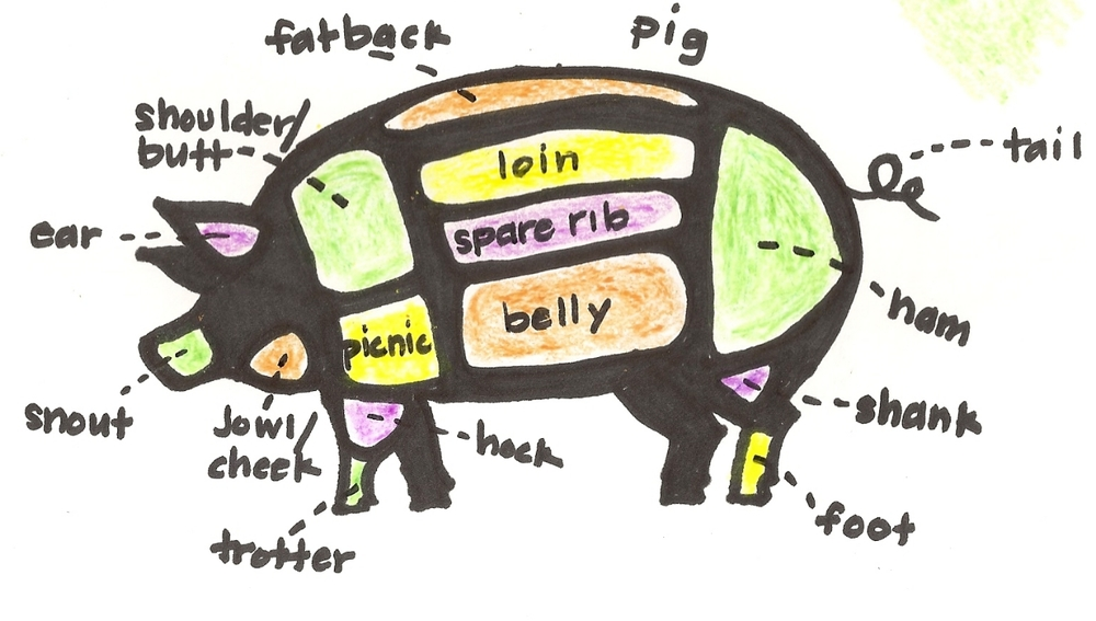 complicated pig.jpg