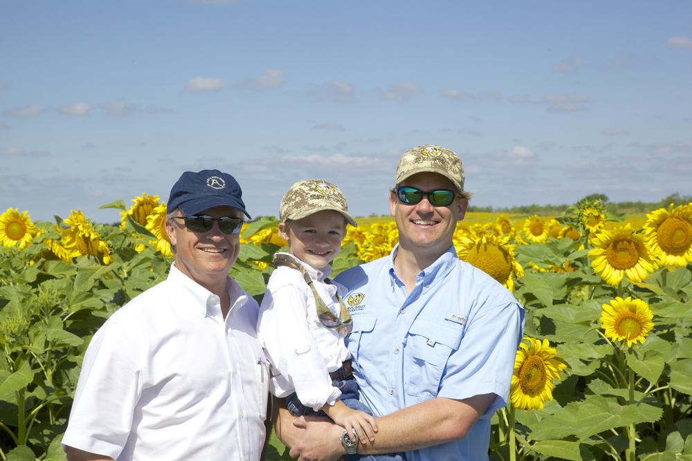 Sunflowers  017.jpg