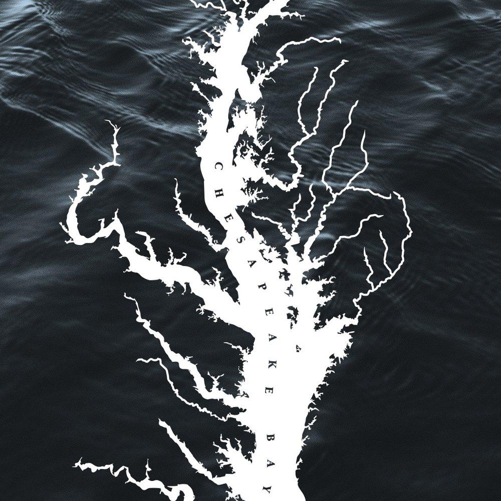 The Chesapeake Bay Foundation - Design / Print