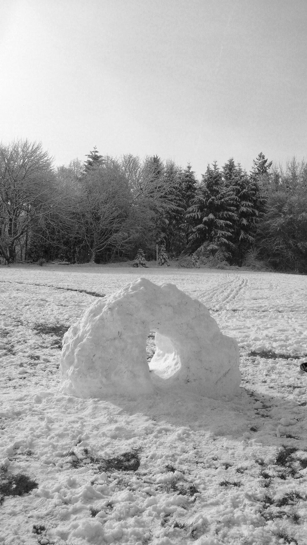 snow_donut.jpg