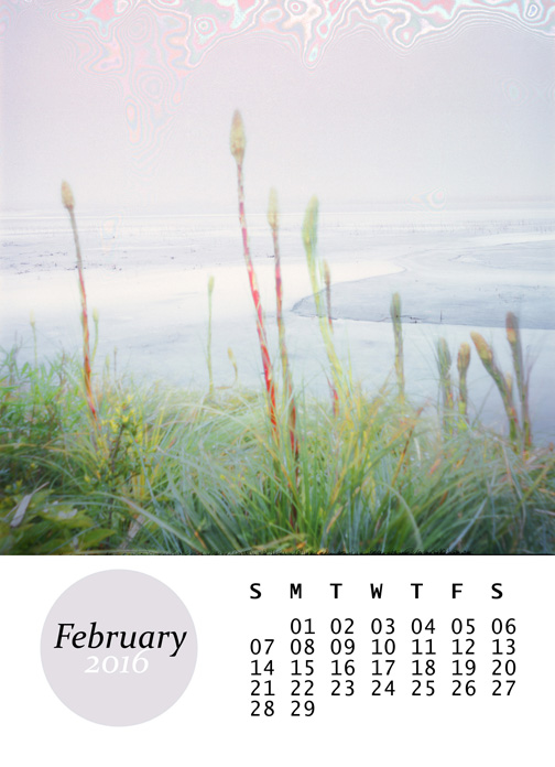 February, from my 2016 mini calendar