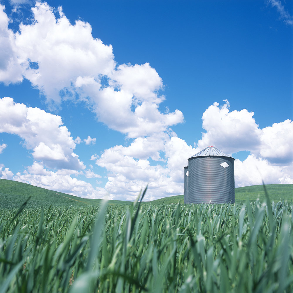 Silos in Green Field