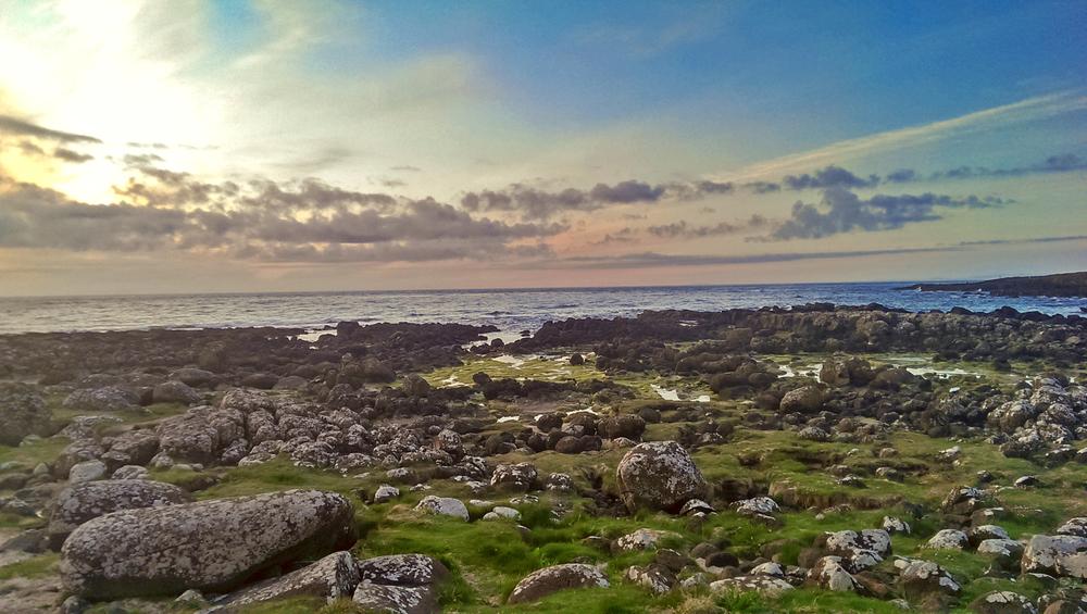 irish-wilderness