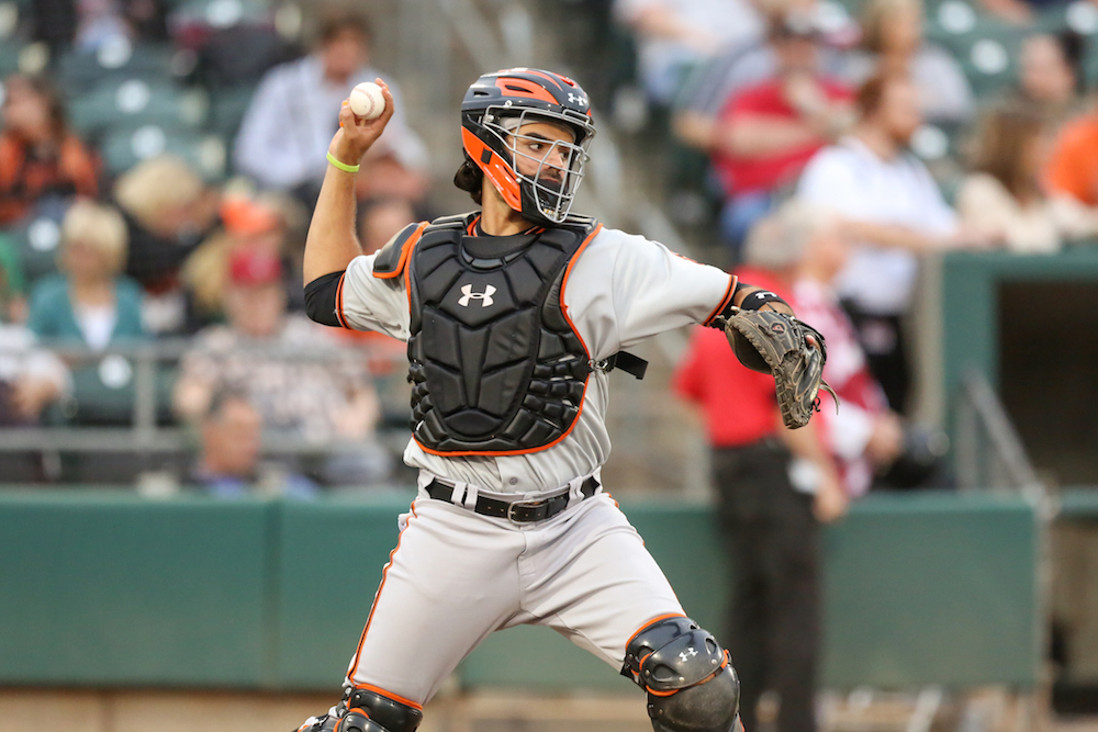 Aramis Garcia is back in the San Jose Giants lineup fully recovered from facial fractures suffered in May of 2016. (Tim Cattera/MiLB.com)