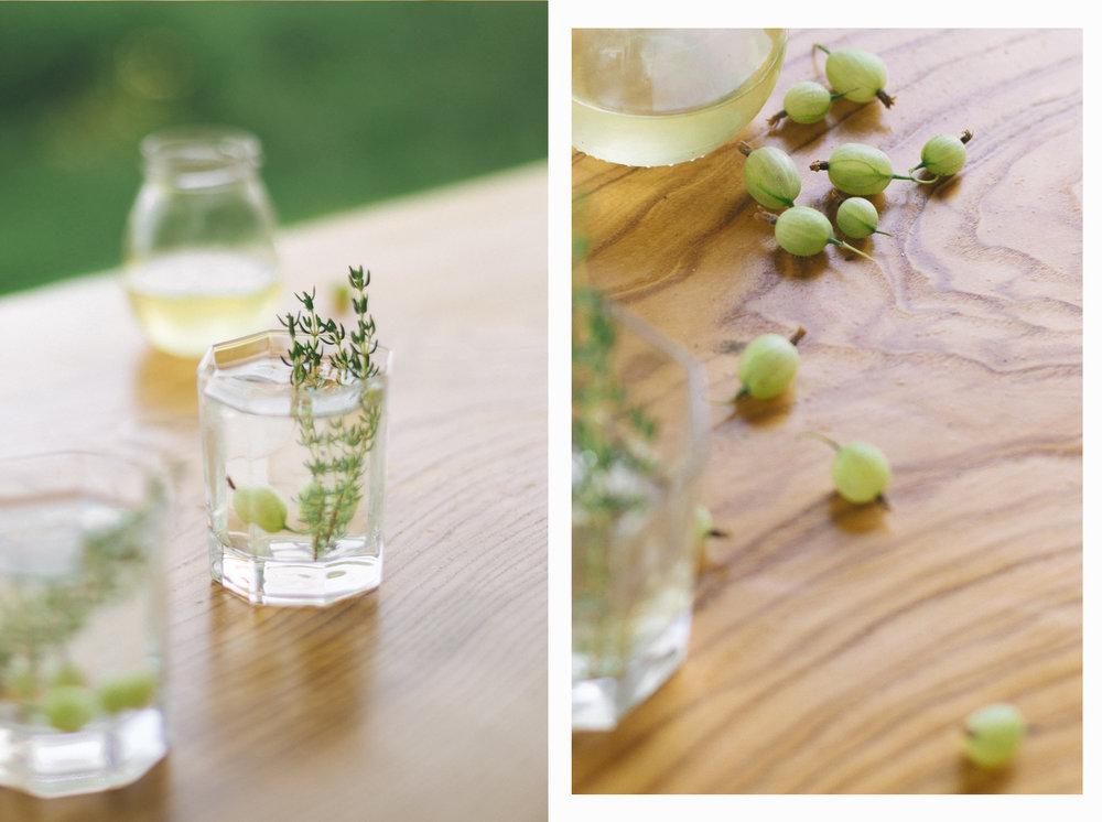 gin z agrestem i syrop z kwiatów bzu