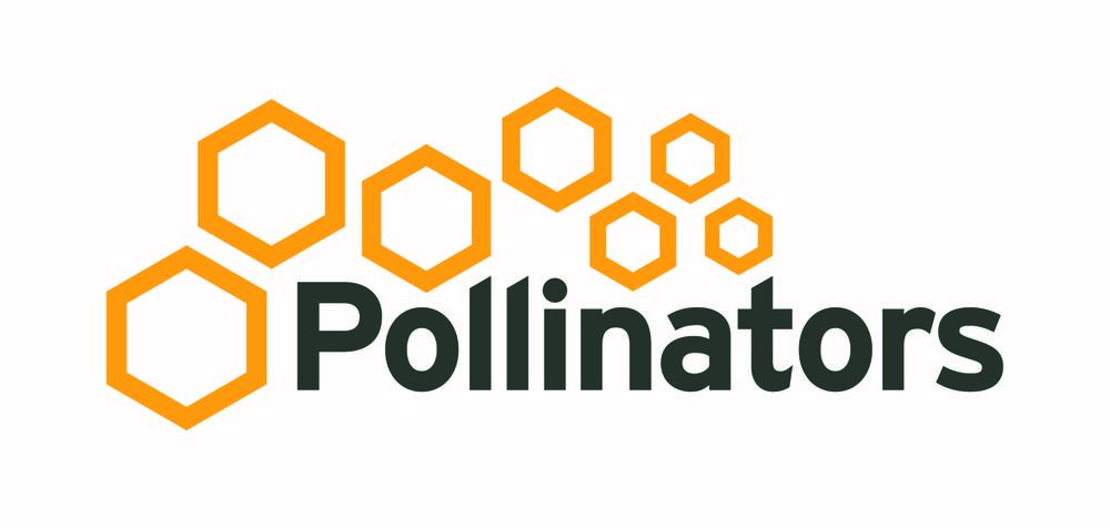 Geraldton, WA Pollinators  - Catalyst Program and Office Space